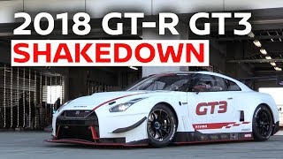 Shaking Down the 2018 Spec Nissan GT-R NISMO GT3 thumbnail