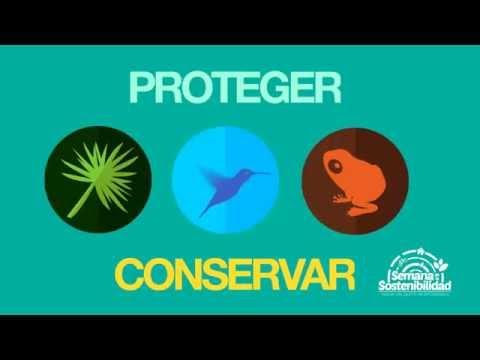 Biodiversidad - Semana de la Sostenibilidad Quito 2015