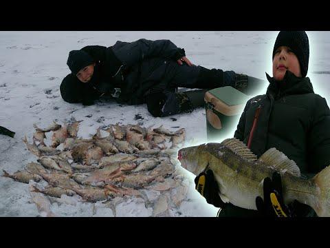 Яузское водохранилище зима рыбалка видео
