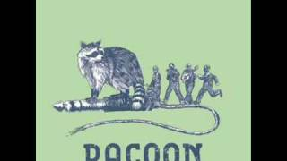 Watch Racoon Run Out video