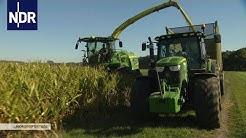 Herbst im Norden: Maisernte unter Hochdruck | die nordreportage | NDR Doku