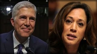 WOW! THE REASON WHY DEMOCRATS ARE BLOCKING NEIL GORSUCH IS SO STUPID IT ACTUALLY HURTS!