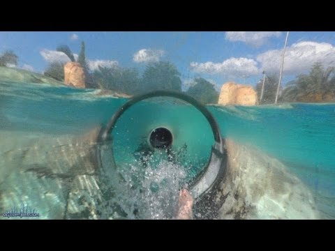 Thumbnail: Dolphin Plunge Body Slide Both Slides (HD POVS) Aquatica Seaworld Water Park Orlando