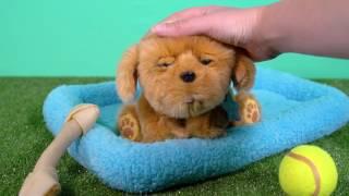 Little Live Pets Puppy   Demo Video