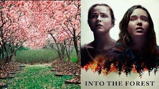 """Отзыв на фильм """"в лесу"""""""