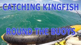 How to catch kingfish around the buoys Hauraki Gulf NZ