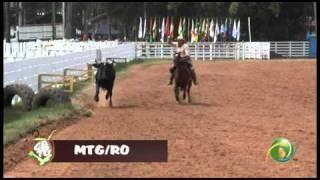 15º Rodeio Crioulo Nacional de Campeõe...