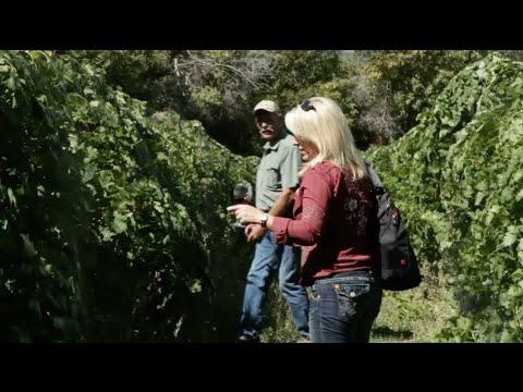Explore Colorado Orchard Valley Farms