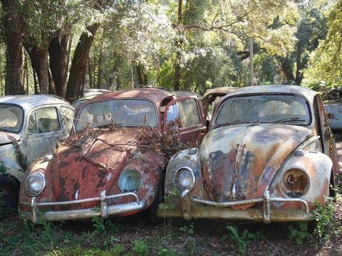 Salvage Yard With TONS of Cars! Old 1950s Trucks and Volkswagen Bugs