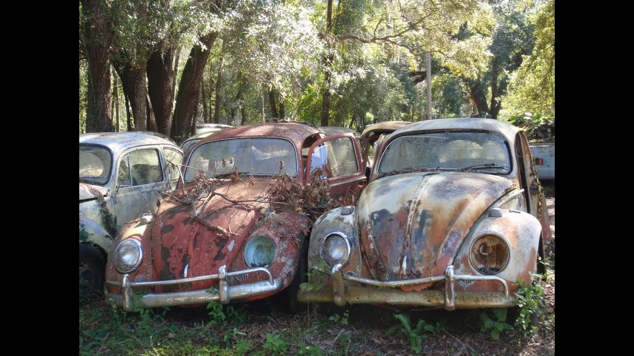 Salvage Yard With TONS of Cars! Old 1950s Trucks and Volkswagen Bugs ...
