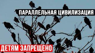 ФИЛЬМ СЕНСАЦИЯ!!! ОТ ЭТОЙ ГИПОТЕЗЫ, КР0ВЬ В ЖИЛАХ СТЫНЕТ!!! (11.06.2020) ДОКУМЕНТАЛЬНЫЙ ФИЛЬМ HD