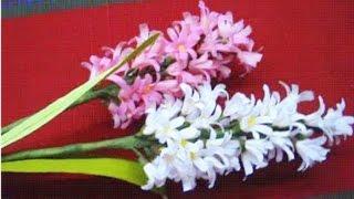 paper flowers hyacinth flower 26