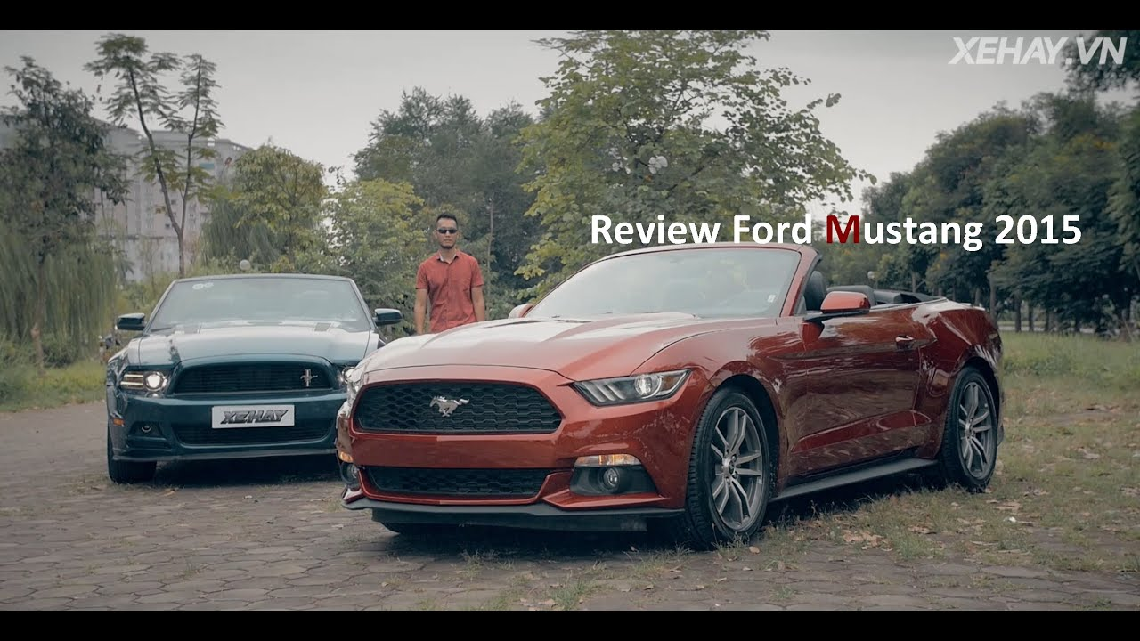 Ford Mustang Xe Hay