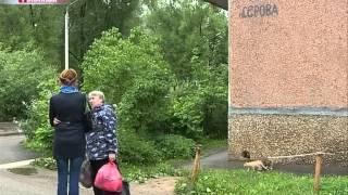 Жителя Рыбинска подозревают в убийстве жены