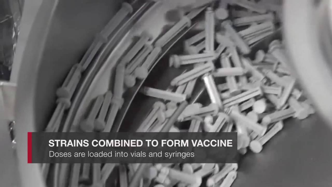 How Pennsylvania's Sanofi Pasteur makes flu vaccine