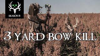 Insane 3 Yard Deer Kill! Best Deer Hunting, Bone Collector | 100% Fair Chase
