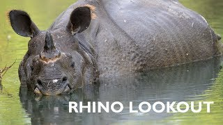 Rhino Lookout: A Second Chance for Rhinos
