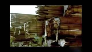 Los disparates de los cubanos en