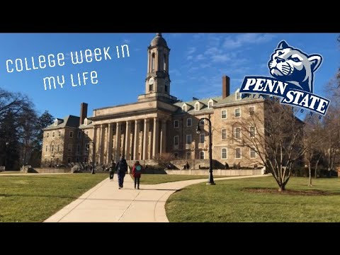 College Week in My Life: Syllabus Week at Penn State