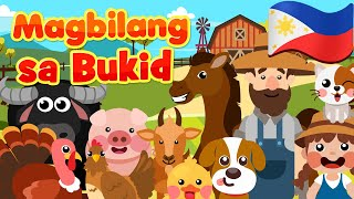 Magbilang sa Bukid | Flexy Bear Originals | Filipino Awiting Pambata