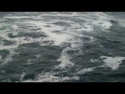 Wędkowanie z klifów Irlandia