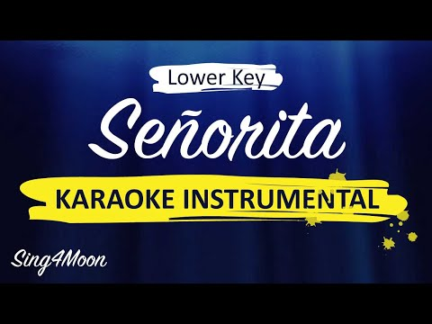 seÑorita-–-shawn-mendes-&-camila-cabello-(karaoke-instrumental)-lower-key