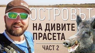 Острів ДИКИХ свиней! Ловля щуки і окуня на річці Дунай частина 2 pike fishing