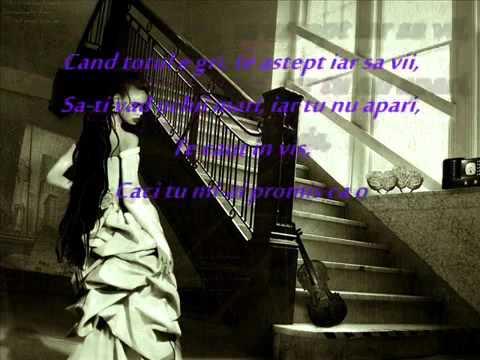 Sandra N Un strain