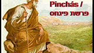 41ª Parashá: Pin