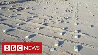 Iraq builds mass grave in the desert as coronavirus deaths surge - BBC News