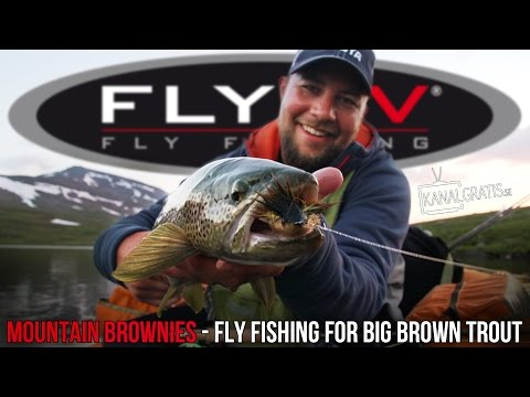 FLY TV - Mountain Brownies - Fly Fishing for Big Brown Trout