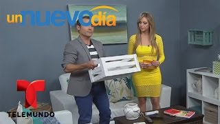 Martín Amado te enseña a organizar y decorar tu hogar fácilmente   Un Nuevo Día   Telemundo