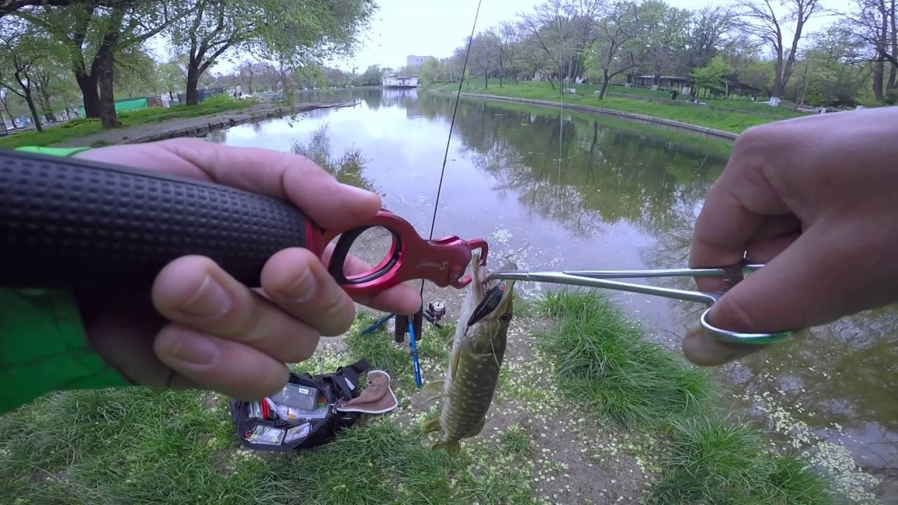 рыбалка видео на щуку проводка