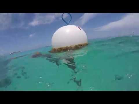 Grand Cayman Island 2016