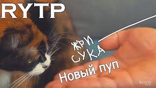 Письки шоу | RYTP
