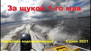 За щукой 1 го мая на Нарвское водохранилище Сезон 2021