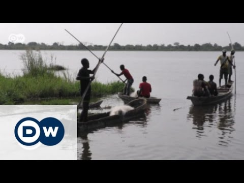 Hippo conservation in Togo | DW English