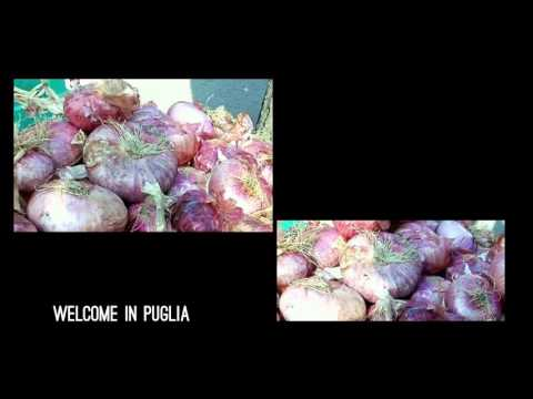 WELCOME IN PUGLIA ACQUAVIVA DELLE FONTI