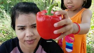 Awesome Cooking Fish w/Tomato recipe -ASMR Eating fish delicious -Village food factory -Asian Food