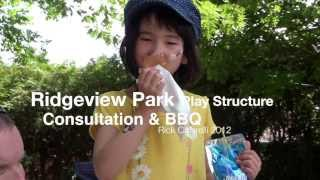 Play Structure Consultation/bbq