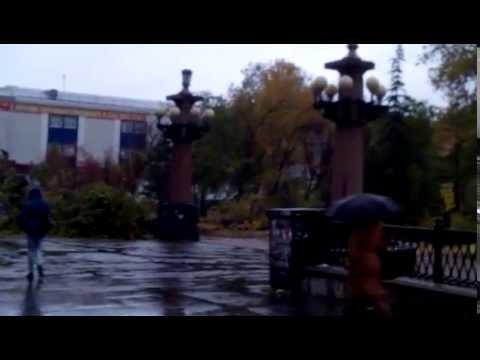 Осень. Под шумок дождя листья падают с деревьяМИ Омск.03.10.14
