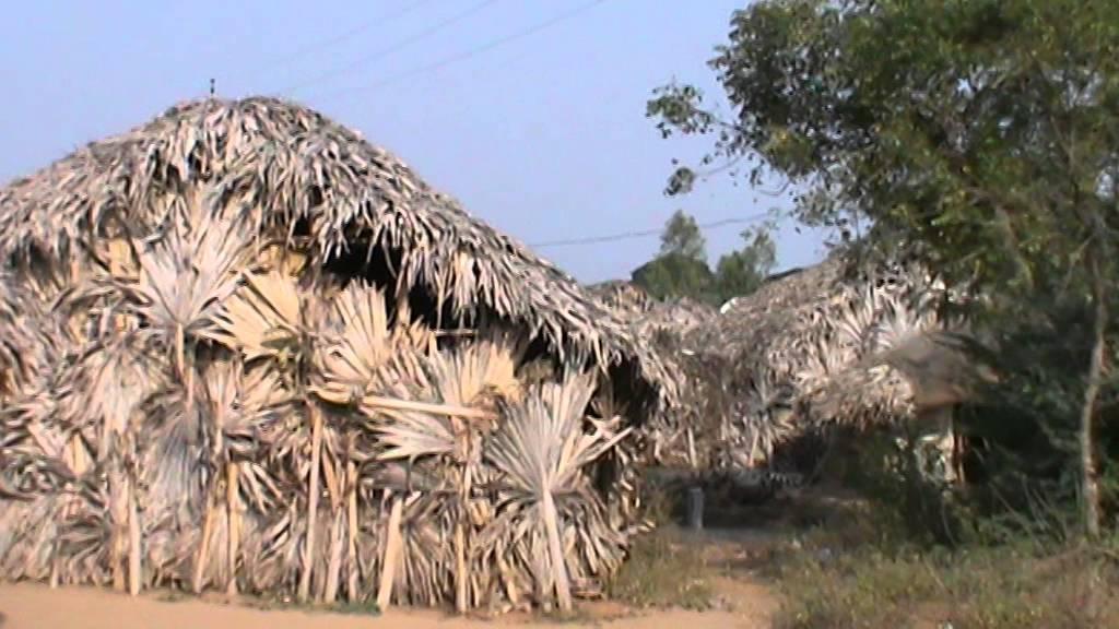 Risultati immagini per bapatla  hut