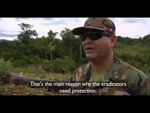 BBC Our World 2013 Peru's Cocaine Trail