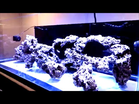 205g Reef Build   Aquascape   Sand   E16