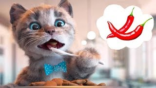 Little Kitten Preschool Adventure Educational Games  Play Fun Cute Kitten Pet Care Learning Gameplay