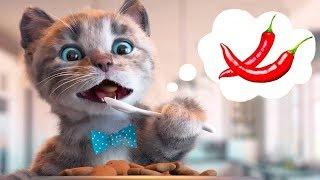 Little Kitten Preschool Adventure Educational Games  Play Fun Cute Kitten Pet Care Learning Gameplay