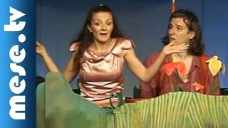 Vaskakas Bábszínház: Pöttöm mesék (színház, mese gyerekeknek)