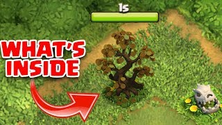 WHAT HAPPENS WHEN U REMOVE FORTUNE TREE IN CLASH OF CLANS | COC FEBRUARY UPDATE 2018 |