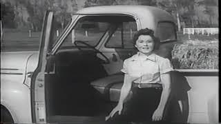 1954 Ford Pickup Vintage Commercial
