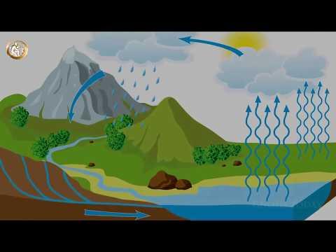 Ejercicio (Sanación, transmutación) para perdonar con amor incondicional de YouTube · Duración:  12 minutos 28 segundos